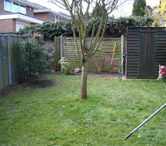 Small family garden redesign greenwood landscapes for Garden redesign